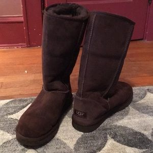 Chocolate Brown Tall Uggs (size 7)